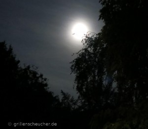 253_Vollmond