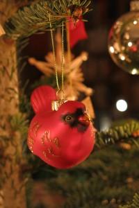 03_Weihnachtsvogel