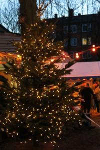 332_Weihnachtsbaum