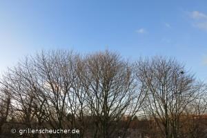 341_blauer_Himmel