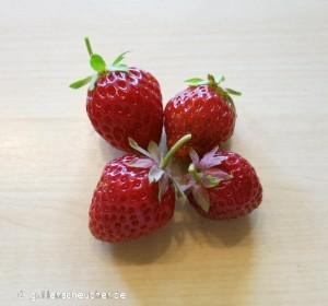 161_Erdbeeren