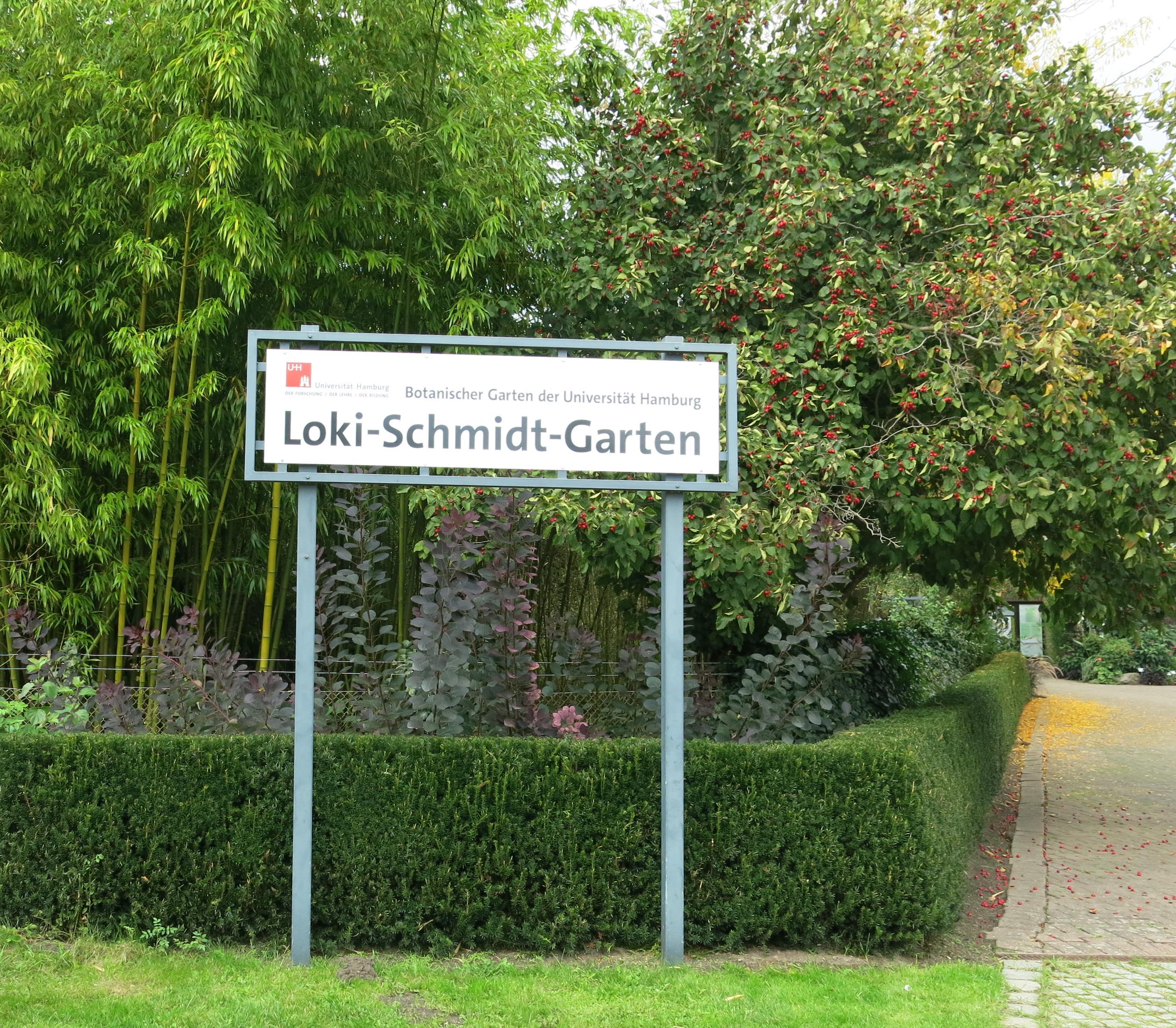Loki Schmidt Garten: Botanischer Garten Klein Flottbek